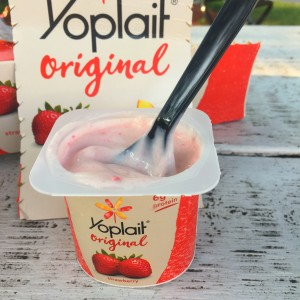 YOPLAITMAIN